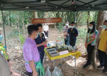 ศวพ.ตรัง ร่วมออกสถานีเรียนรู้/ให้บริการทางการเกษตรในงานวันถ่ายทอดเทคโนโลยี (Field Day)
