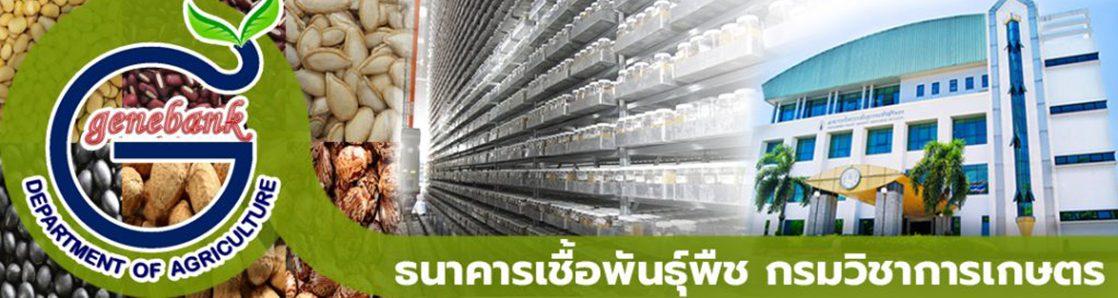 Genebank Thailand