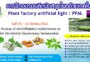 การฝึกอบรมการผลิตพืชสมุนไพรด้วยเทคโนโลยี plant factory artificial light : PFAL