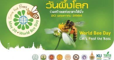 20 พฤษภาคม 2564 วันผึ้งโลก ร่วมสร้างแหล่งอาหารให้ผึ้ง