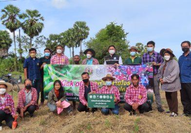 สวพ.8 กรมวิชาการเกษตร เดินหน้า ฟ้าทะลายโจร 1 ล้านแคปซูล