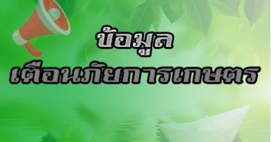 ข้อมูลเตือนภัยการเกษตร  ระหว่างวันที่ 18 พฤศจิกายน ถึง 1 ธันวาคม 2563