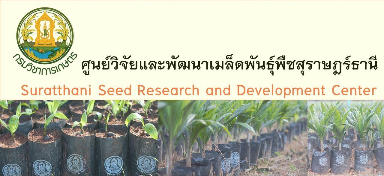 ศูนย์วิจัยและพัฒนาเมล็ดพันธุ์พืชสุราษฏร์ธานี